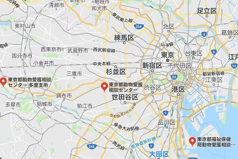 東京都の動物愛護センター