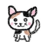 メス猫の画像