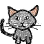 オス猫の画像