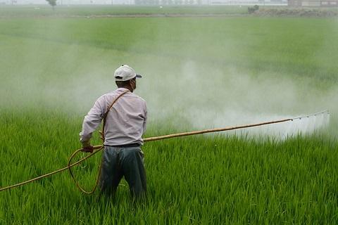 農薬、除草剤といった類は肉食程影響がある